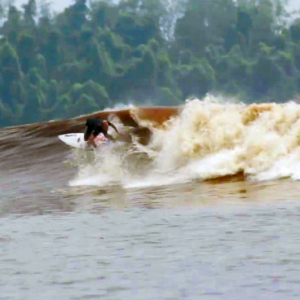 FUS Crew surfing the tidal wave Bono in Sumatra