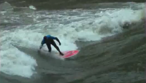 Surfhund