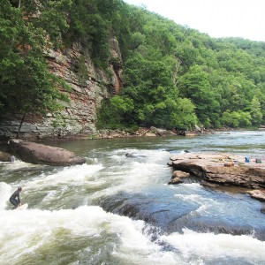 View on the Lower Gauley River