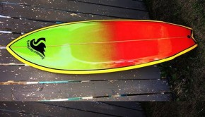 Waveslayar Surfboards